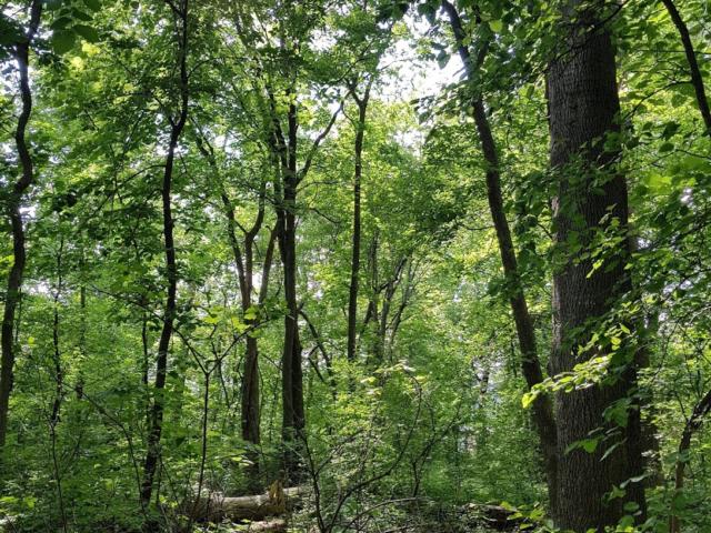 The Greenbelt